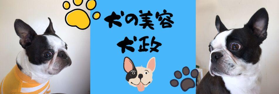 犬の美容|犬政と仲間たち